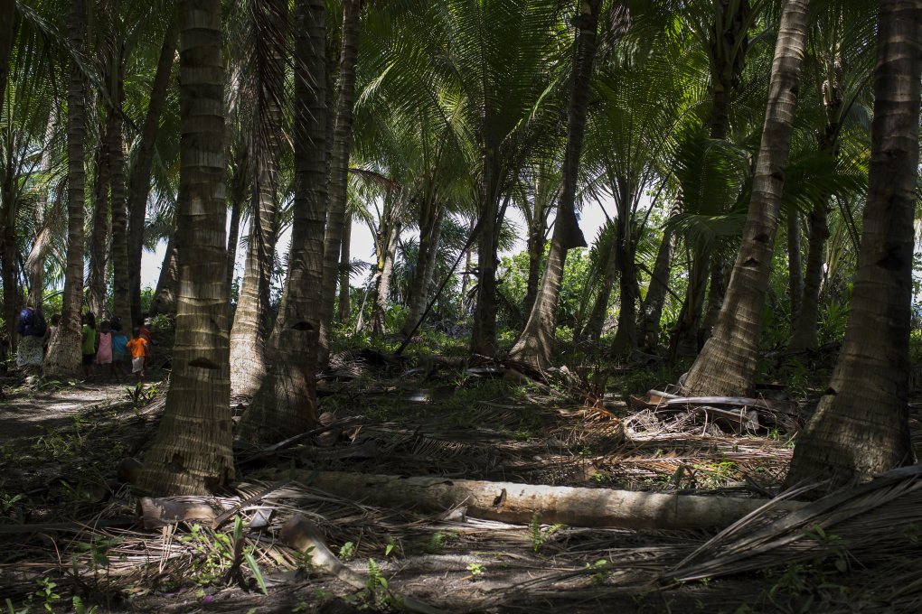 Molukken Kei Eilandengroep Du Roa